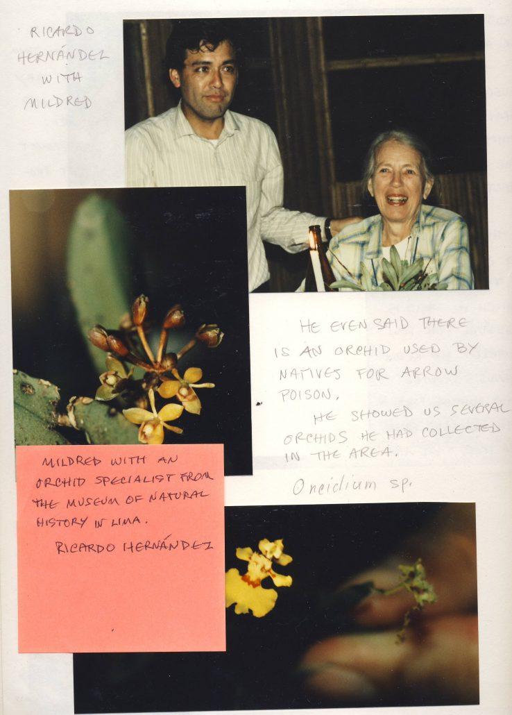1987. Mildred Mathias avec le spécialiste des orchidées Ricardo Hernandez du muséum d'histoire naturelle de Lima. Sharon Belkin - Cultea