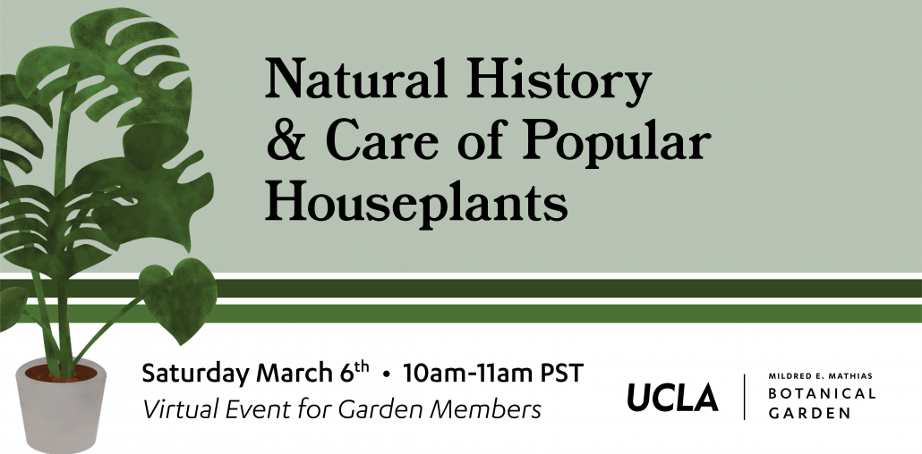 Houseplant Natural History Event