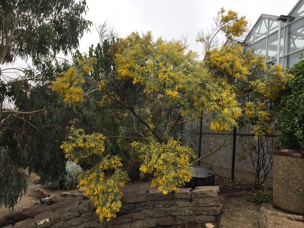 February 2017 – Mildred E. Mathias Botanical Garden