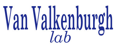 Lab of Blaire Van Valkenburgh