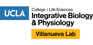 Claudio Villanueva Lab