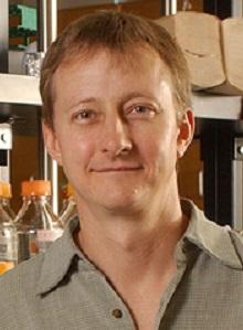 Steven Jacobsen