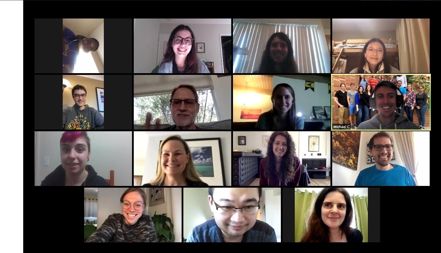 Zoom lab meeting