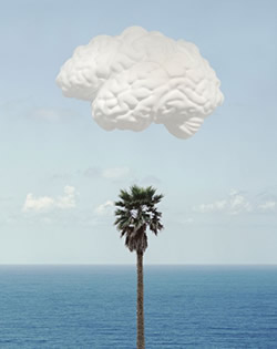 "John Balderassi ""Brain/Cloud (With Seascape and Palm Tree)'"