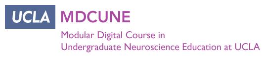 Modular Digital Course in Undergraduate Neuroscience Education